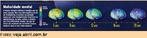 Cientistas vem mapeando o cérebro de cerca de 1 000 adolescentes com técnicas avançadas de tomografia. As descobertas são surpreendentes, especialmente se considerarmos que até há alguns anos era consenso científico que o cérebro completava seu crescimento na infância e não se alterava mais. Hoje se sabe que várias estruturas cerebrais seguem evoluindo durante a adolescência, embora nem todas cresçam.  A idade em que essas mudanças se processam varia. O cérebro das meninas desenvolve-se cerca de dois anos mais cedo, mas homens e mulheres costumam emparelhar lá pelos 20 anos. De forma geral, no início da adolescência ainda está em processo uma mudança que começa entre 7 e 11 anos. É quando crescem certas regiões cerebrais ligadas à linguagem, como a área de Broca, uma pequena estrutura dentro do córtex pré-frontal. O processo costuma chegar ao fim antes dos 15 anos. No período de desenvolvimento, notam-se grandes progressos no uso da escrita – é a idade ideal para aprender novas línguas. A mudança maior começa pelos 18 anos e pode avançar até os 25. É quando o córtex pré-frontal amadurece, consolidando o senso de responsabilidade que falta a tantos adolescentes.  Palavras-chave: adolescentes, neurociência, desenvolvimento humano, cérebro.