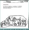 Problema de matemática aplicada em uma turma de Educação Infantil. Em conjunto com a imagem 2, evidencia as diferentes formas de representação matemática.