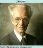 Burrhus Frederic Skinner (1904 -1990 ), psicólogo norte-mericano, é a expressão mais célebre do behaviorismo, que restringe seu estudo ao comportamento (behavior, em inglês), tomado como um conjunto de reações dos organismos aos estímulos externos. O princípio do behaviorismo é que só é possível teorizar e agir sobre o que é cientificamente observável.
